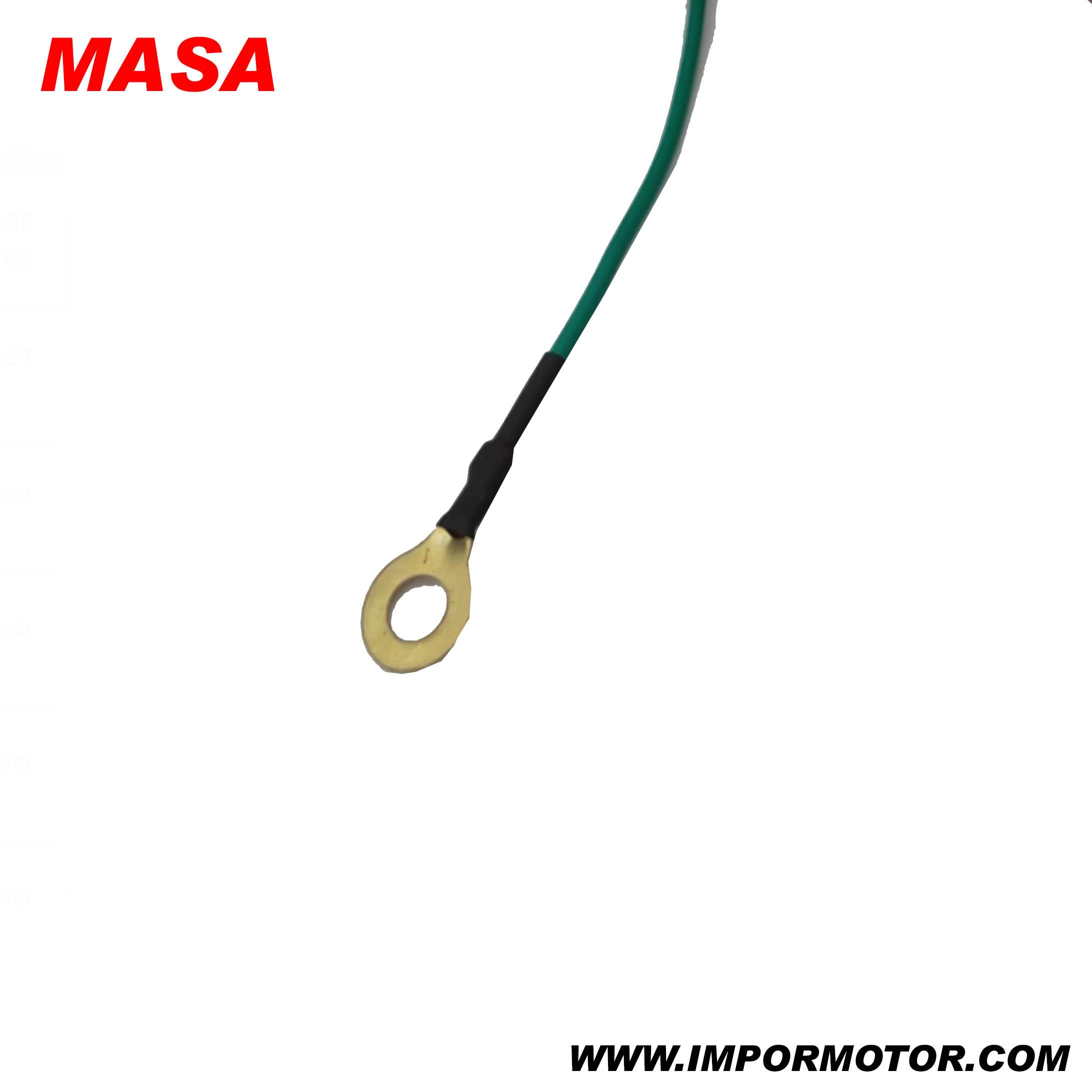 MASA-2.jpg