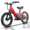 Bici20Red.jpg