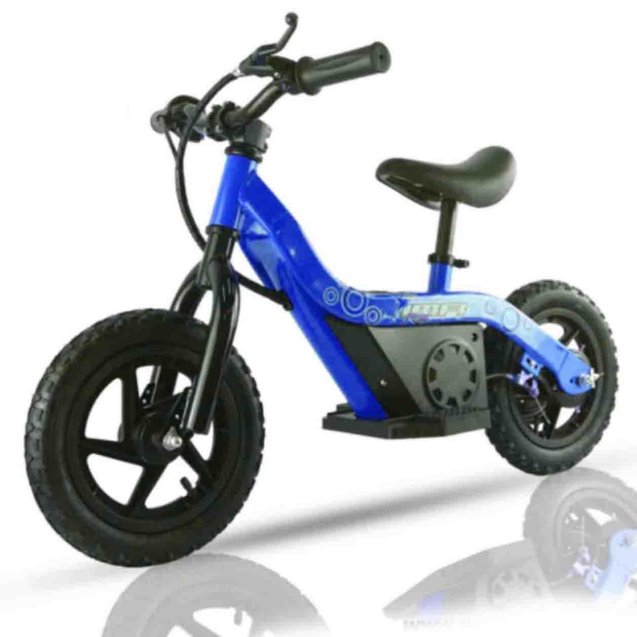 Bici20azul201.jpg